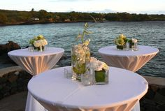 Centerpieces of Kale, White Orchids, roses and ti leaf. Cocktail tables
