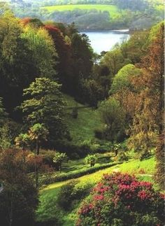 Glendurgan Garden in Cornwall - with view to the Helford River. by maura