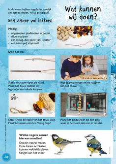 Our social Life Winter Project, Winter Theme, Love My Job, Activities For Kids, School, Children, Projects, Bird Theme, Biology