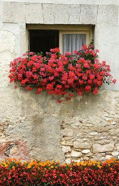 Window box ~ Château d'Etoges