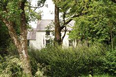 the welsh house littlegreenshed blog 4