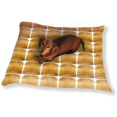 Toast In The Morning Dog Pillow Luxury Dog / Cat Pet Bed - For you to view further for this item, visit the image link. (This is an affiliate link and I receive a commission for the sales)