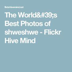 The World's Best Photos of shweshwe