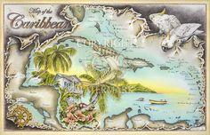 Caribbean Castaway