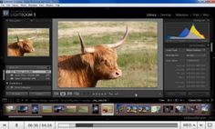 30 Adobe Photoshop Lightroom Tips and Tutorials | Vandelay Design Blog