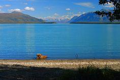 Alaska, a rare beauty. #beautifulearth #iboatsdotcom