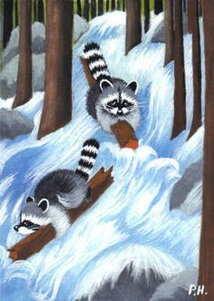 ACEO Print Raccoon Flash Flood Water Trees | eBay
