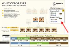 Tells the Probability of different eye colors for your baby - Baby eye color Calculator. Very cool.