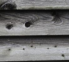 Holz von Jasardpu