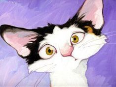Gallery | Georg Williams♥•♥•♥ #CatDibujo