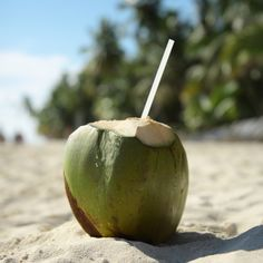 Image about theme in — 𝗍𝗁𝖾𝗆𝖾 𝗉𝗂𝖼𝗍𝗎𝗋𝖾𝗌 . Summer Of Love, Summer Beach, Summer Time, Puerto Rican Culture, Theme Pictures, Fruit Water, Kiss The Cook, Coconut Grove, Healthy Summer