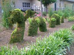 nessie topiary - Google zoeken Outdoor Sculpture, Garden Sculpture, Topiary Garden, Loch Ness Monster, Crop Circles, Pathways, Sculptures, Dragon, Outdoor Structures