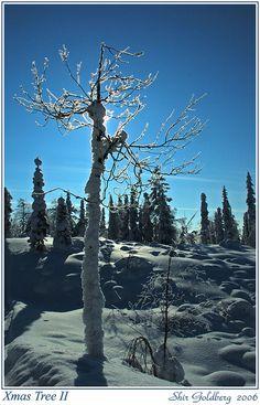 Kuusamo, Finland http://www.travelandtransitions.com/destinations/destination-advice/europe/