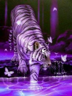 ...once, I'm also having a tiger, but he don't was a purple one, he was white and brown, and he was living whit me in my house, he was a cat, a little, sweeeeet cat... purple, he was brown and white
