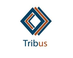 Tribus Logo design - Tribus is the Latin for three. The logo is an image of three frames lying on each other. The logo is originally in blue and orange. But looking at the logo showcase innovation which is signified by the arrows which do not point to only one direction but to the left and right which shows the diversity of the innovation and also also an artistic nature of showing thinking both inside and outside the box. Price $180.00