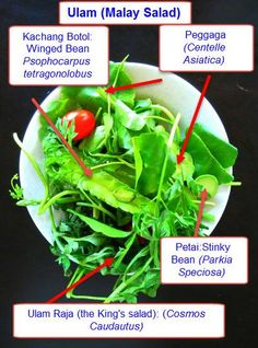 Some vegetables found in Malay Ulam (salad)
