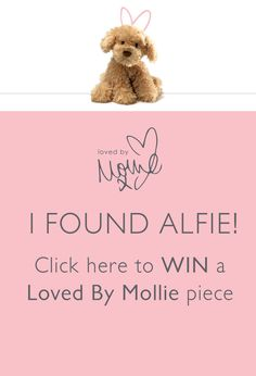 Join the hunt for Mollie King's dog Alfie - hidden in her gorgeous @oasisfashion  collection. #LovedByMollie http://oasisstor.es/OasisMollie