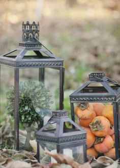 persimmons engagement styled by Wynn Austin & photos by Joielala Photographie. Pottery barn lanterns