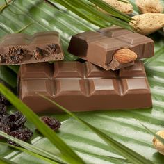 Milk Chocolate Rain Forest Collection - set of 3 -Our Rain Forest Milk Collection highlights South American cocoa with our Red Elephant premium milk chocolate blend. The three-piece set includes one premium milk chocolate bar, one whole roasted, salted Spanish almond bar and one chocolate-covered raisin bar.