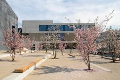 Zentrum Leue, Männedorf / Landschaftsarchitektur: Raderschall Partner