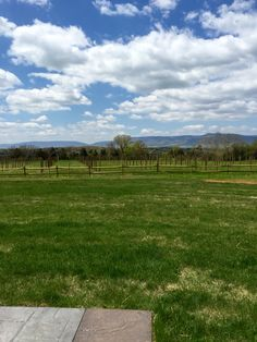 Spring at Faithbrooke! We're ready to host your Shenandoah Valley wedding. Shenandoah Virginia, Shenandoah Valley, Destination Wedding, Wedding Venues, Blue Ridge Mountains, Dc Weddings, Vineyard Wedding, Mountain View, Barn