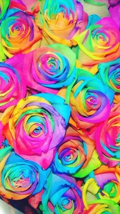 Somewhere over the rainbow Rainbow Rose So Beautiful & So Lovely. Somewhere over the rainbow Rainbow Rose So Beautiful & So Lovely. Beautiful Landscape Wallpaper, Beautiful Flowers Wallpapers, Pretty Wallpapers, Beautiful Roses, Flower Phone Wallpaper, Galaxy Wallpaper, Flower Wallpaper, Wallpaper Backgrounds, Rainbow Flowers
