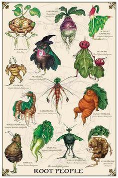 Botanical Drawings, Botanical Art, Botanical Kitchen, Vintage Botanical Prints, Magical Creatures, Fantasy Creatures, Poster Harry Potter, Arte Sketchbook, Collage Art