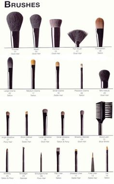What makeup brushes are for what - Beauty Darling