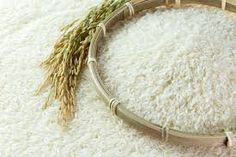 rice - Google Search