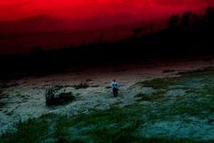 Rasen kaigan (Spiral Shore), 2012 Shiga Lieko