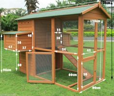 Do you have a flock of chickens that are growing in size? If your chickens have outgrown their small coop or if you're thinking of bringing home a large Chicken Coop Designs, Diy Chicken Coop Plans, Backyard Chicken Coops, Building A Chicken Coop, Chickens Backyard, Pet Chickens, Backyard Farming, Chicken Nesting Boxes, Chicken Cages