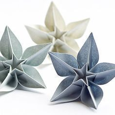 Origami Carambola Flowers by Carmen Sprung Aren't they just beautiful? Find out how to fold these origami flowers from a single sheet of paper, no glue needed! Origami Carambola Flowers -link to video tutorial by Carmen Sprung, long but includes how to fo Origami Diy, Origami Ball, Origami Tutorial, Origami Ideas, Origami Instructions, Origami Things, Flower Tutorial, Origami Paper Art, Lotus Origami