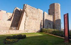 Tarragona - Circo romano y muralla