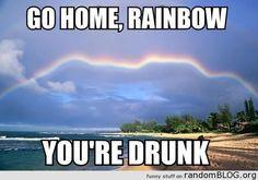 Lol go home rainbow your drunk haha