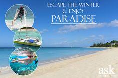 Experience the beautiful island of Barbados to the fullest. Amazing beachfront vacation homes, adventures at sea and island safaris. Barbados, Villa, Beautiful Islands, Surfboard, Safari, House, Sea, Vacation, Adventure