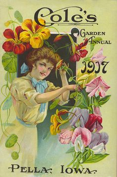 Cole's Garden Annual, Glossy Art Print Taken From A Beautifully Illustrated Vintage Seed Catalogue Or Seed Packet Cover.