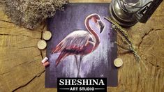 How to draw a Flamingo with soft pastels  Sheshina Ekaterina