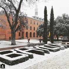 Winter wonderland at Baylor University