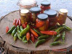 Receita de Pimenta em conserva - Tudo Gostoso
