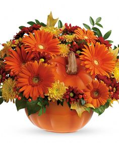 Country Pumpkin   Perfect for a fall centerpiece, birthday or Halloween party, this flower-filled ceramic pumpkin is a real cutie-pie. #EllentonFlorist Halloween Flowers, Halloween Party, Thanksgiving Flowers, Local Florist, Flowers Online, Online Gifts, Planter Pots, Centerpieces, Bouquet