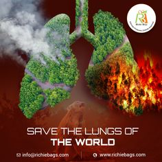 Our forests are the lungs of the world, no economy can develop at its expense. Be a part of a nature respecting economy for a better world and greener future. Wish Quotes, Jute Bags, Palm Oil, Lungs, Cotton Bag, Go Green, Worlds Of Fun, Forests, Canvas Tote Bags
