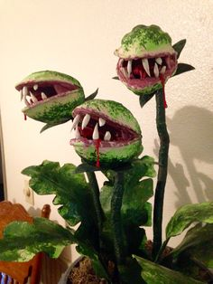 "Creepy plants Another man-eating plant for the conservatory, Snapping Dragon ""…"