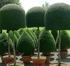 love pots...