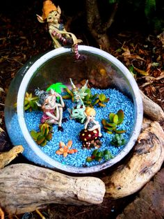 1000+ images about GONE A BIT FAIRY GARDEN CRAZY!!! on ... - photo#42