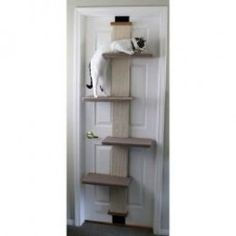 The Top Cat Trees and Condos for under $100