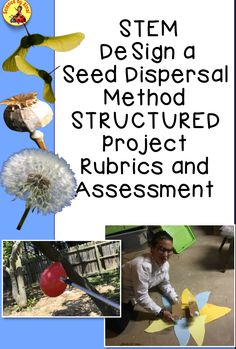 Science Resources, Interactive Activities, Science Lessons, Science Activities, Science Labs, Science Ideas, Classroom Resources, Earth Science, Life Science