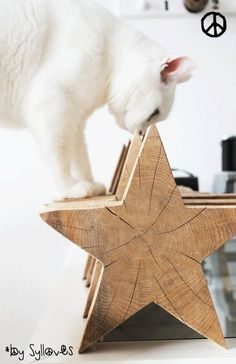 white cat and wooden stars Noel Christmas, Nordic Christmas, White Christmas, Christmas Crafts, Christmas Decorations, Xmas, Christmas Ornaments, Holiday Decor, Tag Design