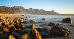 Take some stunning photographs while visiting the beautiful Kogel Bay Resort near Cape Town. Animal Species, Great Pictures, Days Out, Cape Town, Wilderness, South Africa, Coast, Water, Travelling