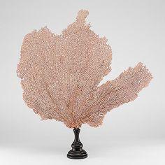Creel & Gow Pink Sea Fan