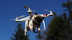 Melhor Custo Benefício em Produtos de Tecnologia.: Melhor Custo Benefício em Drone - SYMA H8HG / X8HW...
